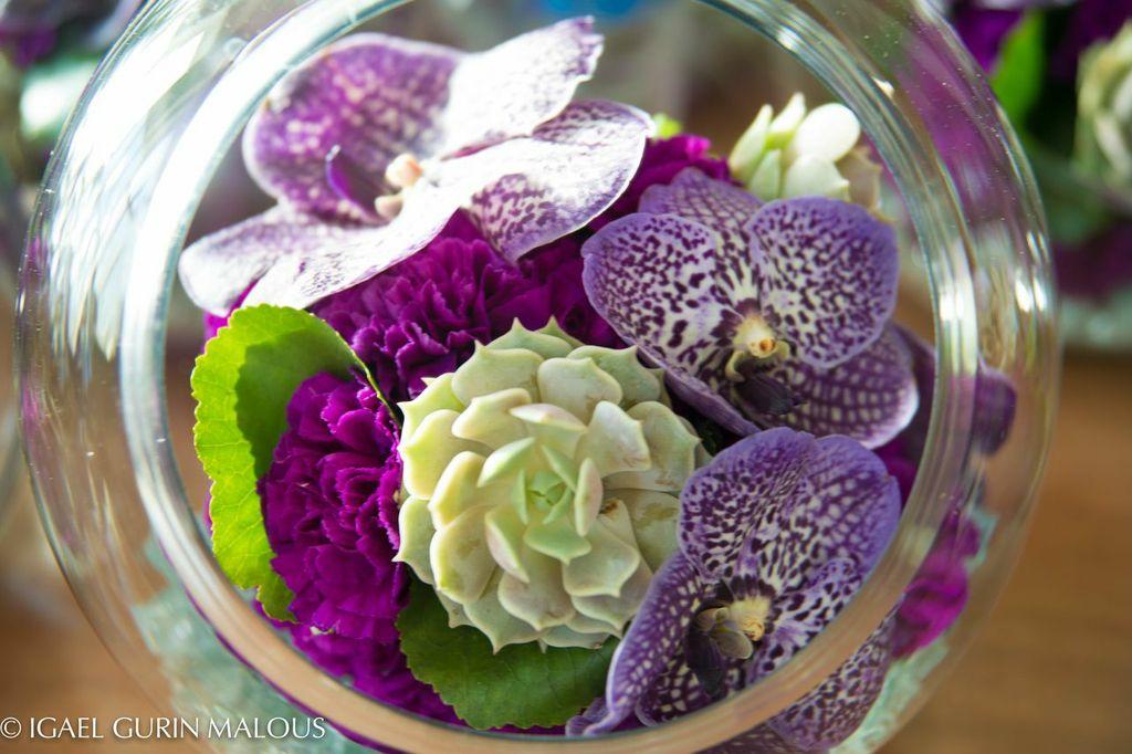 Vanda Orchid & Succulent chic wedding details
